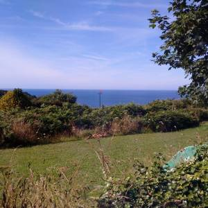 Sark View From Livingroom