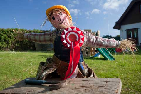 Deadline for Scarecrow entries, theme 'Going for Gold'