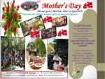 2014 Mother's Day Voucher Ad