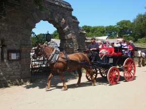 Horse and Carriage outside La Seigneurie Gardens