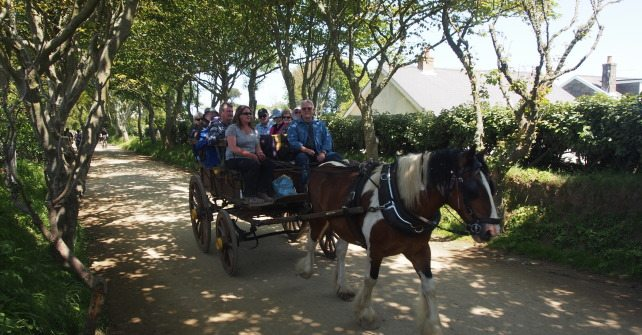 Carriage rides on Sark