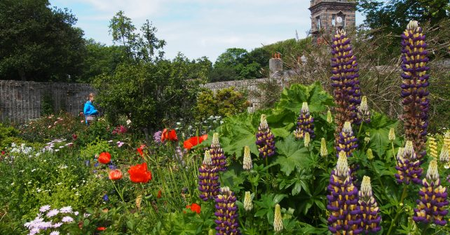 Guided tours of La Seigneurie gardens