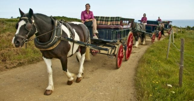 Danny Wakley Carriages