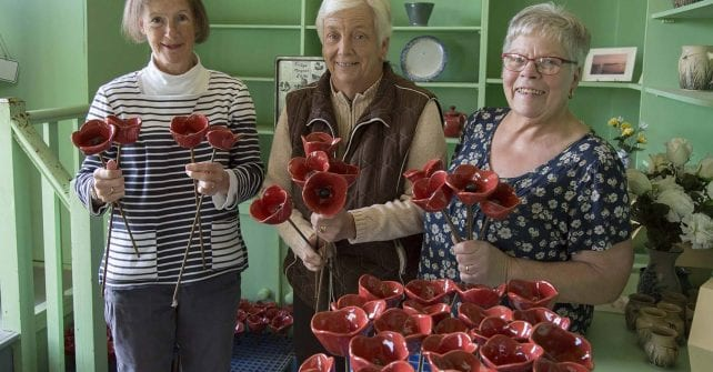 Remembrance Day Poppies for Sale